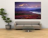 Charles Sleicher - Denali National Park near Wonder Lake, Alaska, USA - Poster
