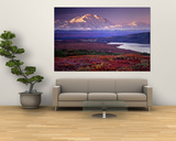 Parco Nazionale Denali vicino al lago Wonder, Alaska, USA Poster di Charles Sleicher