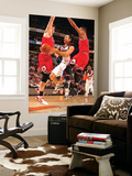 Chicago Bulls v Phoenix Suns: Steve Nash Posters by Barry Gossage