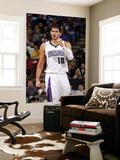Chicago Bulls v Sacramento Kings: Omri Casspi Poster by Rocky Widner