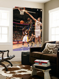 Indiana Pacers v Los Angeles Lakers: Darren Collison and Pau Gasol Posters by Andrew Bernstein