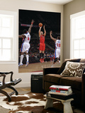 Toronto Raptors v Detroit Pistons: Linas Kleiza, Ben Wallace and Greg Monroe Posters by Allen Einstein