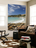 Boat Harbour Beach and Orange Lichen on Rocks, North Western Tasmania, Australia Posters by David Wall