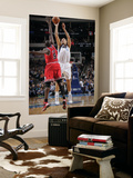 Chicago Bulls v Dallas Mavericks: Dirk Nowitzki and Luol Deng Prints by Glenn James