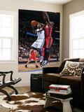 New Jersey Nets v Denver Nuggets: Ty Lawson and Johan Petro Prints by Garrett Ellwood