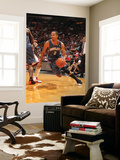 Charlotte Bobcats v Miami Heat: Shaun Livingston Prints by Victor Baldizon
