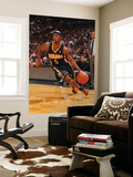 Indiana Pacers v Miami Heat: T.J. Ford Prints by Victor Baldizon