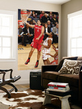 Houston Rockets v Charlotte Bobcats: Luis Scola and Boris Diaw Print by Kent Smith
