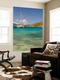Snorkelers in Idyllic Cove, Norman Island, Bvi Print by Trish Drury
