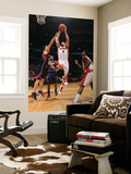 Atlanta Hawks v Toronto Raptors: Linas Kleiza and Zaza Pachulia Prints by Ron Turenne