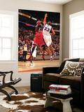 Chicago Bulls v Phoenix Suns: Luol Deng and Grant Hill Prints by Barry Gossage
