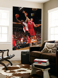 Philadelphia 76ers v Miami Heat: Dwyaen Wade and Spencer Hawes Prints by Victor Baldizon