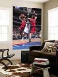Toronto Raptors v Philadelphia 76ers: Lou Williams, Sonny Weems and David Andersen Posters by David Dow