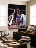Phoenix Suns v Orlando Magic: Jason Richardson and Brandon Bass Art by Andrew Bernstein
