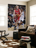 Houston Rockets v Dallas Mavericks: Chase Budinger and Shawn Marion Posters by Glenn James