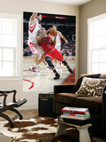 Chicago Bulls v Houston Rockets: Derrick Rose, Brad Miller and Luis Scola Posters by Bill Baptist