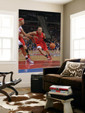 Toronto Raptors v Detroit Pistons: Jerryd Bayless and Charlie Villanueva Prints by Allen Einstein