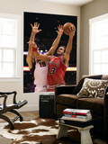 Chicago Bulls v Phoenix Suns: Joakim Noah and Hedo Turkoglu Posters by Christian Petersen