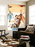 Denver Nuggets v Phoenix Suns: Hedo Turkoglu and Al Harrington Print by Barry Gossage