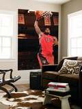 Toronto Raptors v New York Knicks: Amir Johnson Posters by Ray Amati