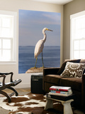 Great White Heron Print by Thomas Winz