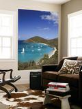 Caribbean, British Virgin Islands, Jost Van Dyke, White Bay Posters by Michele Falzone