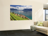 Switzerland, Vaud, Lavaux Vineyards, St; Saphorin Village and Lac Leman / Lake Geneva Posters by Michele Falzone