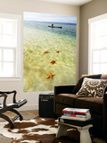 Sea Stars in Tropical Water at Star Beach Prints by Alfredo Maiquez