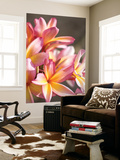 Plumeria or Frangipani Print by Ann Cecil
