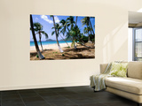 Palm Trees Facing Beach Art by John Elk III