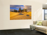 Sand Dunes and Oasis, Desert, Tunisia Posters af Peter Adams