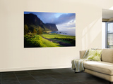 Coastal Landscape, Lord Howe Island, New South Wales, Australia Print by Peter Hendrie