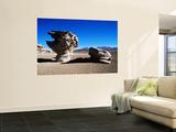 Bizarre Rock Formation known as Arbol De Piedra (Stone Tree) Poster by Craig Pershouse