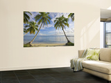 Panama, Bocas Del Toro Province, Carenero Island, Palm Trees and Beach Posters af Jane Sweeney