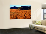 Stock Trails and Wilpena Pound Range, Rawnsley Park Station Prints by Ian Connellan