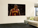 Cleveland Cavaliers v Miami Heat: Antawn Jamison Posters by Mike Ehrmann
