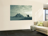 Pyramids, Giza, Egypt Print by Steve Vidler