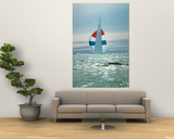 The Sailboat Nefertiti Competing in the America's Cup Trials Prints by George Silk