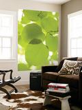Greg Elms - Leaves of Linden Tree, Botanic Gardens Reprodukce