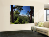 Mt. Teide, Tenerife, Canary Islands, Spain Print by Alan Copson