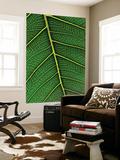 Peepal Leaf Poster by Hira Punjabi