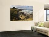 Overhead of Wild Coast Posters by Ariadne Van Zandbergen