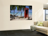 Caribbean, Antigua, Dickenson Bay, English Red Telephone Box Prints by Gavin Hellier
