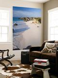 Horseshoe Bay, South Coast Beaches, Southampton Parish, Bermuda Posters by Gavin Hellier