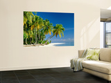 Palm Trees and Tropical Beach, Maldive Islands, Indian Ocean Art by Steve Vidler