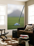 Golf Club and Ball on Green at Le Touessrok Golf Course Prints by Holger Leue