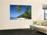 El Nido, Palawan Island, Philippines Posters af Peter Adams