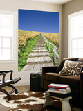 Wooden Walkway Cutting Through Fields of Tall Bamboo Grass Art by Paul Dymond