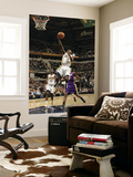 Los Angeles Lakers v Indiana Pacers: Darren Collison Prints by Ron Hoskins