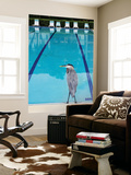 Heron at Pool Prints by Thomas Winz